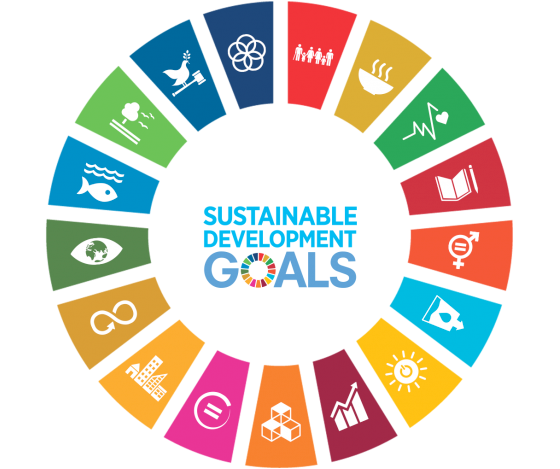 Chart of the Global Sustainable Development Goals